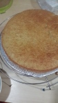 golden sponge cake fresh out of the oven